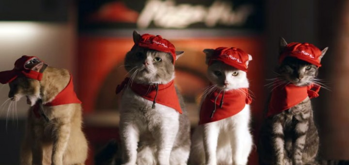 pizza-cats-pizza-hut-japan-grand-opening-advertisement-video